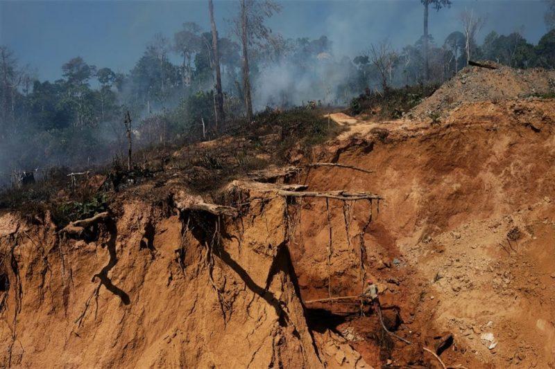khám phá rừng amazon