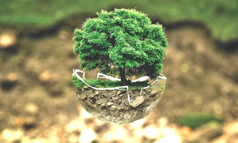 Carbon Footprint Nghia La Gi