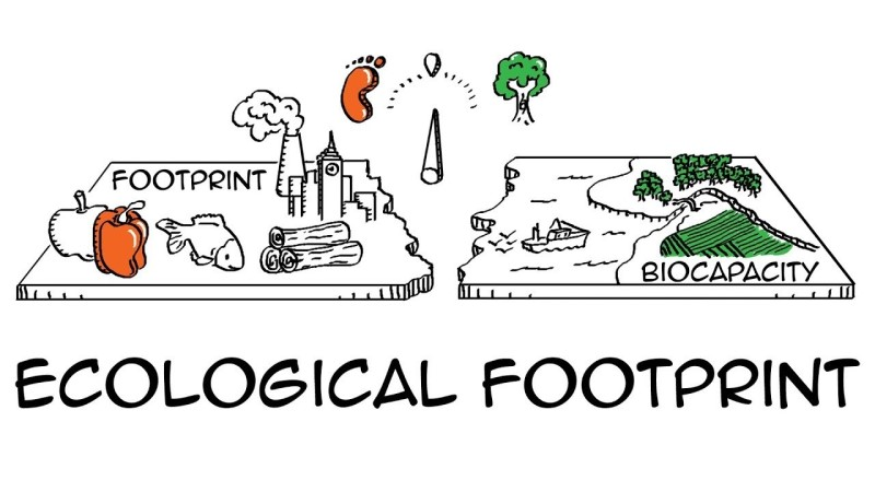 Ecological Footprint La Gi
