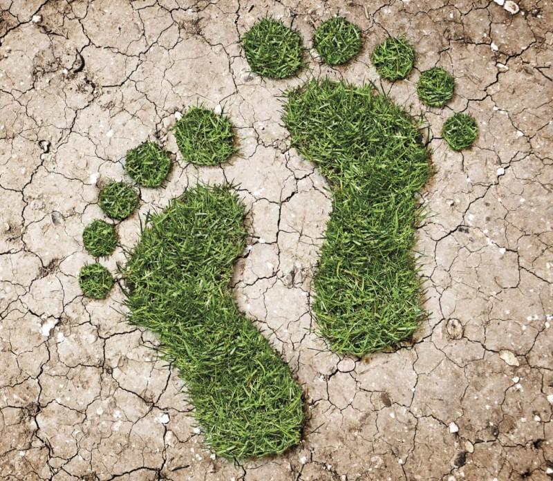 Footprint Nghia La Gi 1