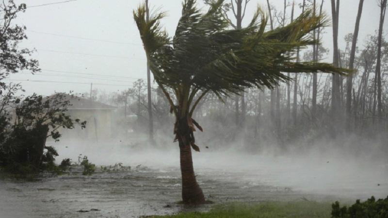 Hurricane La Gi