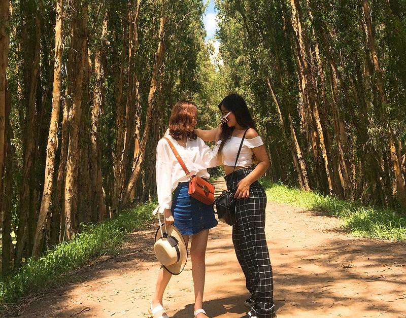 rừng tràm an giang