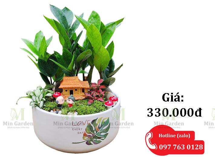 Chau Kim Tien Gia 330k 1