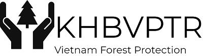 Bảo vệ phát triển rừng