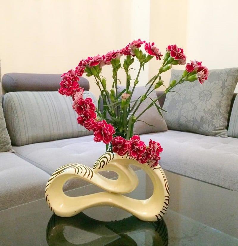 Hoa Cẩm Chướng 10 800x824