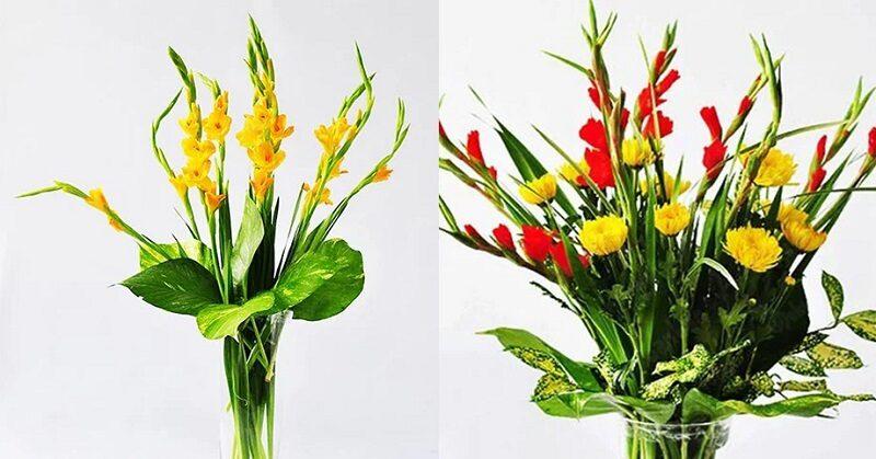 Hoa Lay ơn 13 800x419