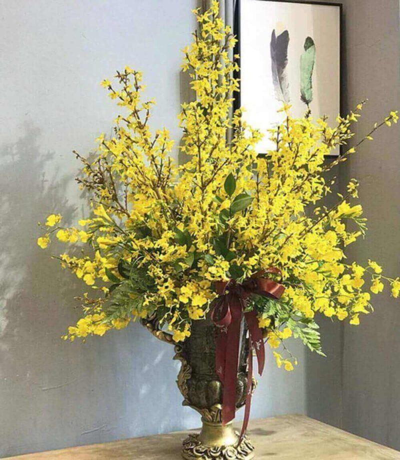 Lọ hoa mai vàng trong nhà